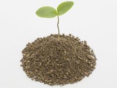 珪藻土は安全な素材